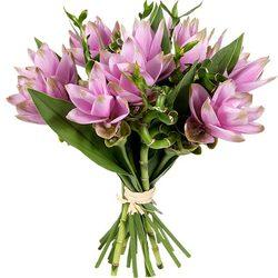livraison de superbes fleurs fra ches par aquarelle. Black Bedroom Furniture Sets. Home Design Ideas