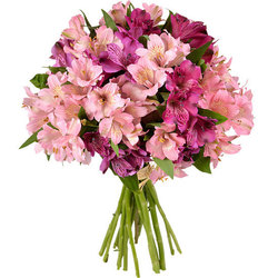 A pretty bouquet of 30 pink altromerias