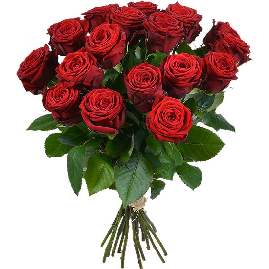 Bouquet of long-stemmed red roses
