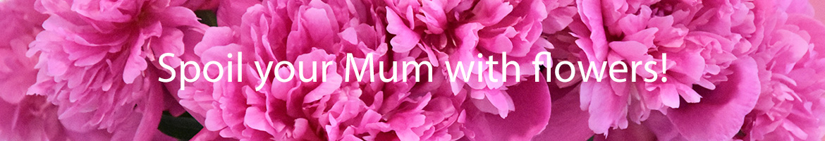 Treat you mum on 27th May!
