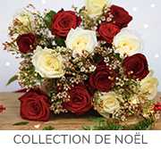 Collection-de-noel