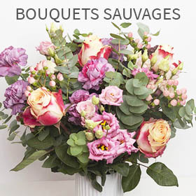Bouquets sauvages