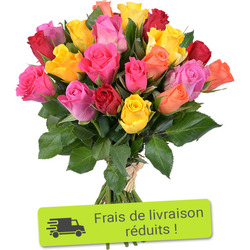 Harlequin bouquet of 20 multi-coloured roses