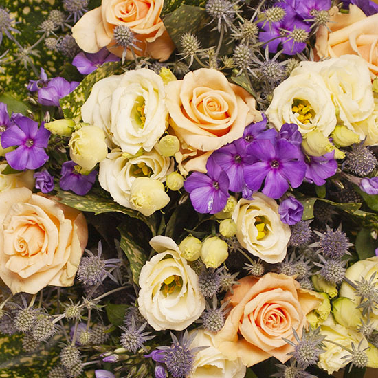 bouquet harmonie de couleurs livraison de fleurs aquarelle. Black Bedroom Furniture Sets. Home Design Ideas