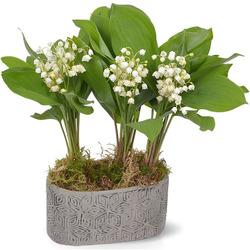 aquarelle livraison fleurs 100 conforme au bouquet command. Black Bedroom Furniture Sets. Home Design Ideas