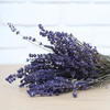 1 bunch of dried lavender<br>Height: 35-40 cm