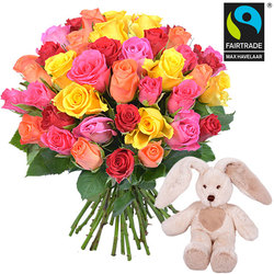Colourful roses and a cuddly, floppy-eared rabbit