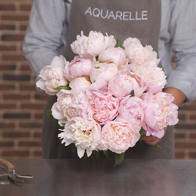 Send flowers to France - Flower