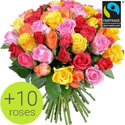 Bouquet de roses équitables Arlequin
