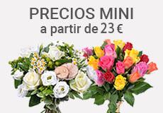 Envio De Flores A Domicilio En Toda Espana Aquarelle - Fotos-ramos-de-flores