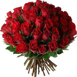 rosas rojas - Imagenes De Ramos De Flores