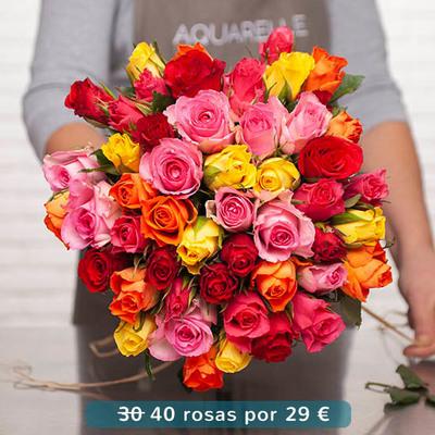 Aquarelle Envío De Flores A Domicilio En Toda España