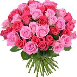 manda rosas frescas - Imagenes De Ramos De Rosas