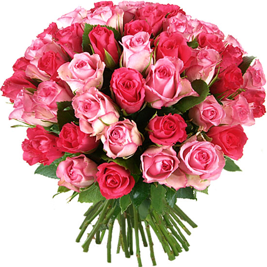 Send this Tendresse bouquet of pink roses