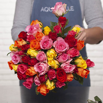 Harlequin Bouquet of Roses