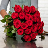 Tall Red Roses