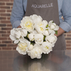 Exceptional White Peonies