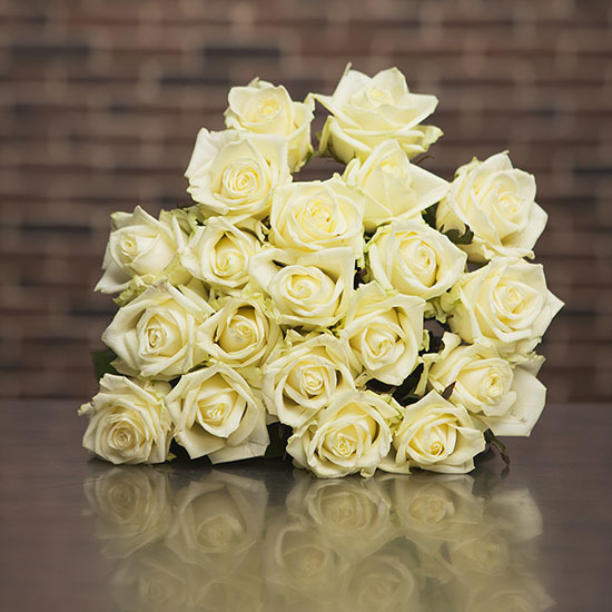 Bouquet of long-stemmed white roses