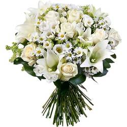 Order a majestic white bouquet