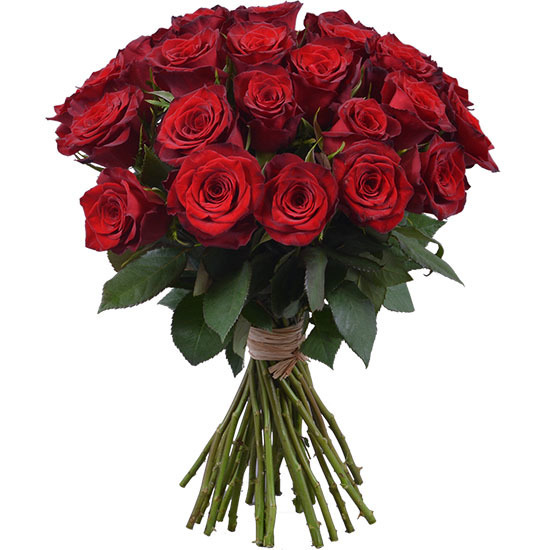Monte Carlo Red Roses