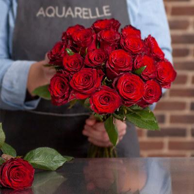 Bedeutung rosen 5 rote