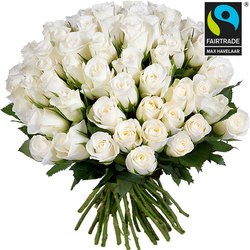 Fairtrade white roses
