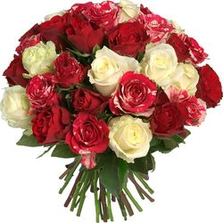 Order a white and red roses bouquet