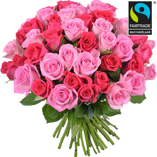 Bouquet of pink Fairtrade roses