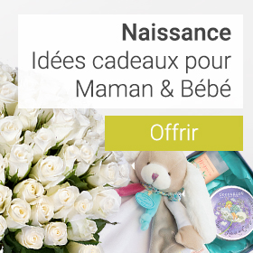 livraison fleurs en suisse - envoyer un magnifique bouquet