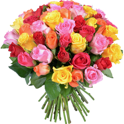 Bouquet de roses multicolores 'Surprise'