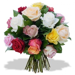 Same day delivery available with 12 Multicolor Roses