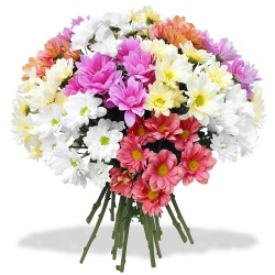 Same day delivery available with the Damsel Bouquet.