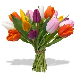 Same day delivery available with the Sempiterno Bouquet