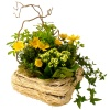 Same day delivery available with the El Dorado Arrangement