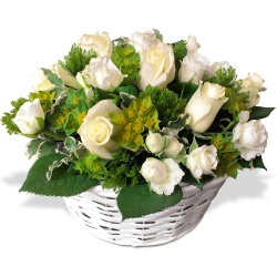 Same day delivery available with the Mimi Arrangement