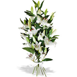 Same day delivery available with the Everest Bouquet