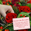 Same day delivery available with the Florist´s Choice for Christmas - Red
