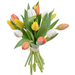 Same day delivery available with the Petricor Bouquet